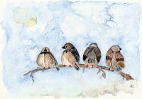 Quatre pardals