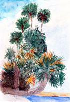 Karibikpalmen