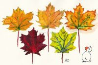 Catálogo de otoño